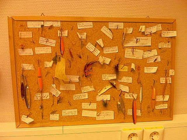 Wall mount of notable objects removed from fishermen thus far in 2007
