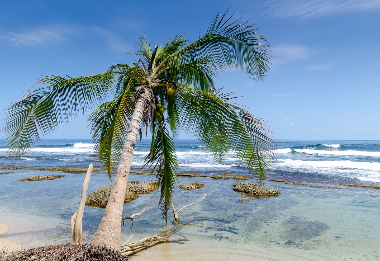 Near playa Mimitimbi, Bocas del Toro, Panama